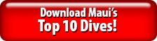 Download Maui's Top 10 Dives!