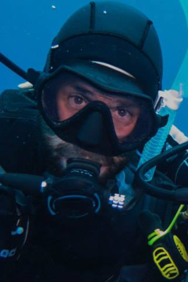 bearded diving