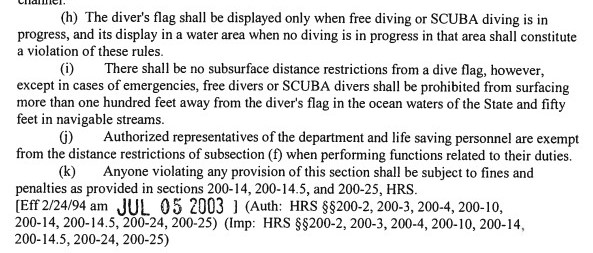 dive flag laws